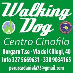 Walking Dog