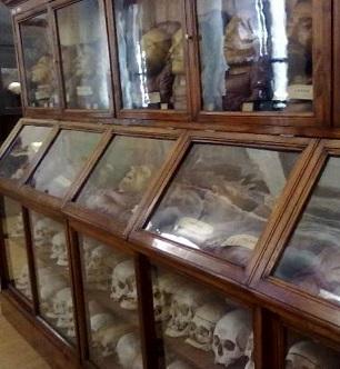 museo-di-antropologia-2